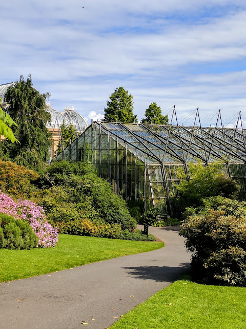 Glasshouses at the Royal Botanic Garden Edinburgh