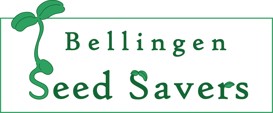 Bellingen Seed Savers Facebook