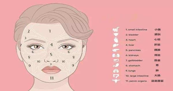 """長在臉上的""""疾病地圖""""(面診、臉部氣色)"""