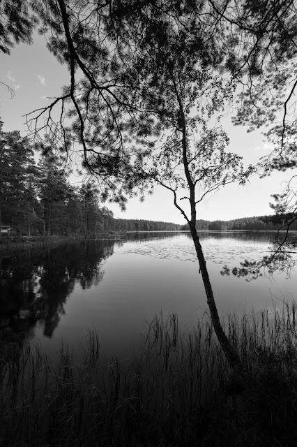 Lago Fagertarn