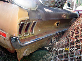 Stored in a makeshift junkyard with 30-or-so Mustangs.