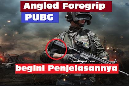 Angled Foregrip PUBG? - Ini dia Penjelasannya | carabapak.com