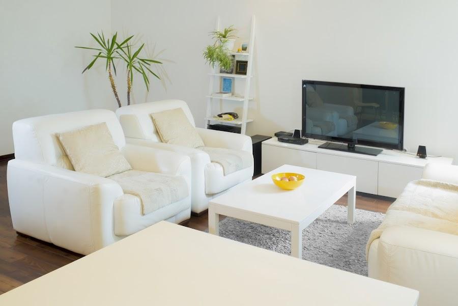 10 consejos para eliminar los ácaros de tu hogar
