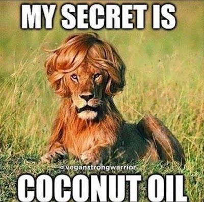 Elenco ragionato delle mie passioni cosmetiche future (hair)