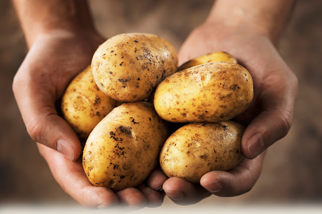 Have You Ever Stored Potatoes in the Fridge? This is Why You Should Never Do it Again
