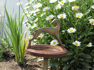 ashtray in a garden with daisies