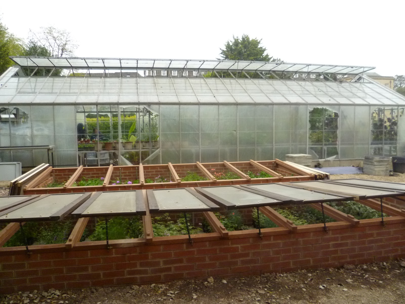 Worcester College Gardeners Normality Resumes In The Nursery