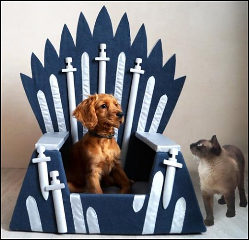 Game of Thrones pet gift ideas - gifts for pets - gifts for dogs - gifts for cats - creative gifts for animal lovers‎ - gifts for pet owners pet stuff - cool stuff to buy - pet supplies - pet cookie jars - dog throw pillows - dog themed bedding - cat throw pillows - paw pillows - gifts for cat loving friends - gifts for dog loving friends
