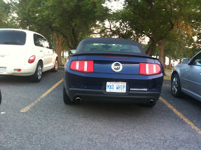 MAD WHIP Ontario personalized vanity plate