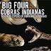 E-book Big Four (cobras indianas) 1ª Edição