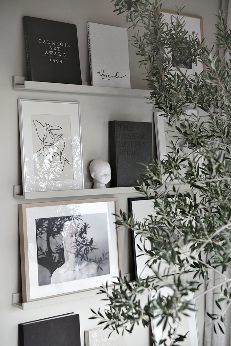 Indoor olive tree in the house of Nina Holst of Stylizimo