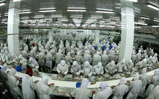 食品加工 chế biến thực phẩm