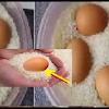 Coba Deh Bunda Taruh Telur Mentah ke Dalam Beras,Hasilnya Bakal Buat Bunda Melongo dan Akan Keterusan Melakukan Hal Ini !!