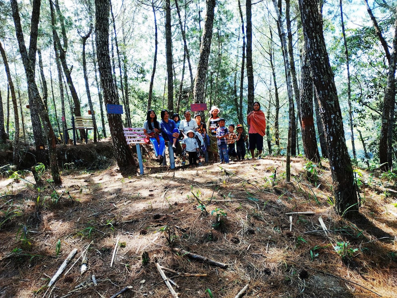 Wisata Hutan Pinus Paonganan
