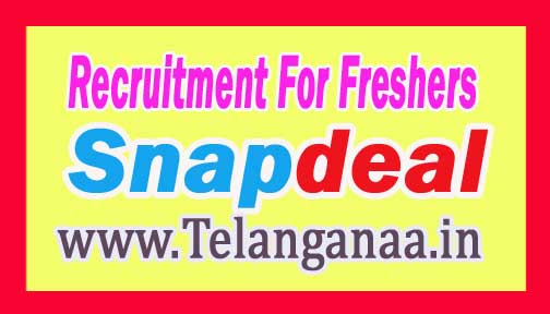 Snapdeal Recruitment 2016-2017 For Freshers Apply