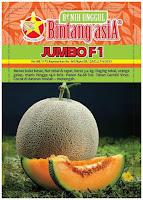 jual melon jumbo,benih melon jumbo,melon jumbo F1,budidaya melon,benih melon,tanaman melon,lmga agro