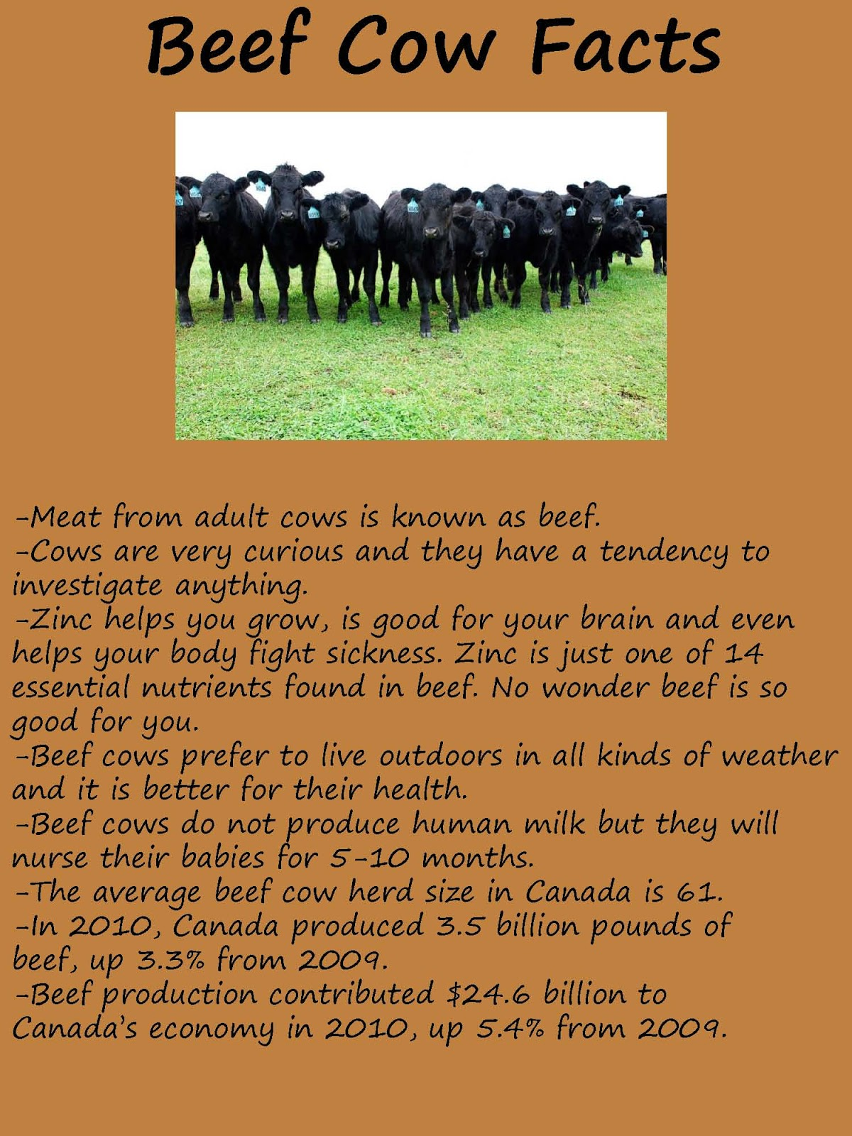 Optimist Club of Norwich  District Corn Maze Farm Facts