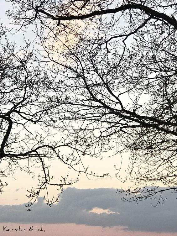 Sonnenuntergang Hunsrück