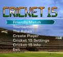 EA Sports Cricket 2015 PC Game Full Version Free Download