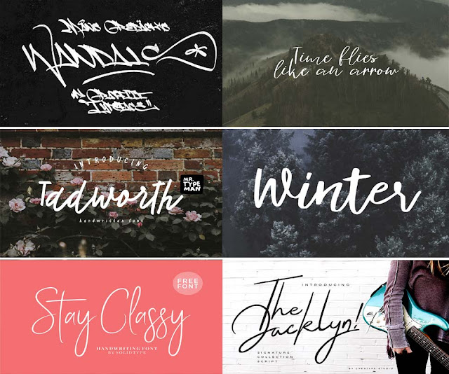 Photography Signature Fonts