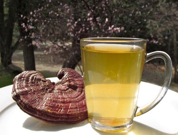 Uống nước nấm linh chi hỗ trợ điều trị ung thư hiệu quả