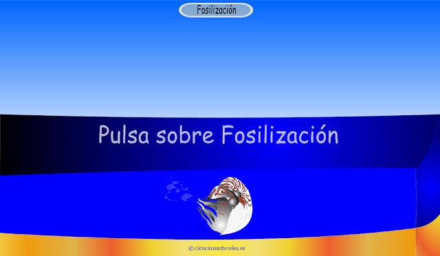 Enlace con Fósiles y Fosilización
