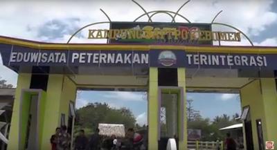 Kampung Sapi PO Kebumen Bertaraf Nasional Terintegrasi Eduwisata