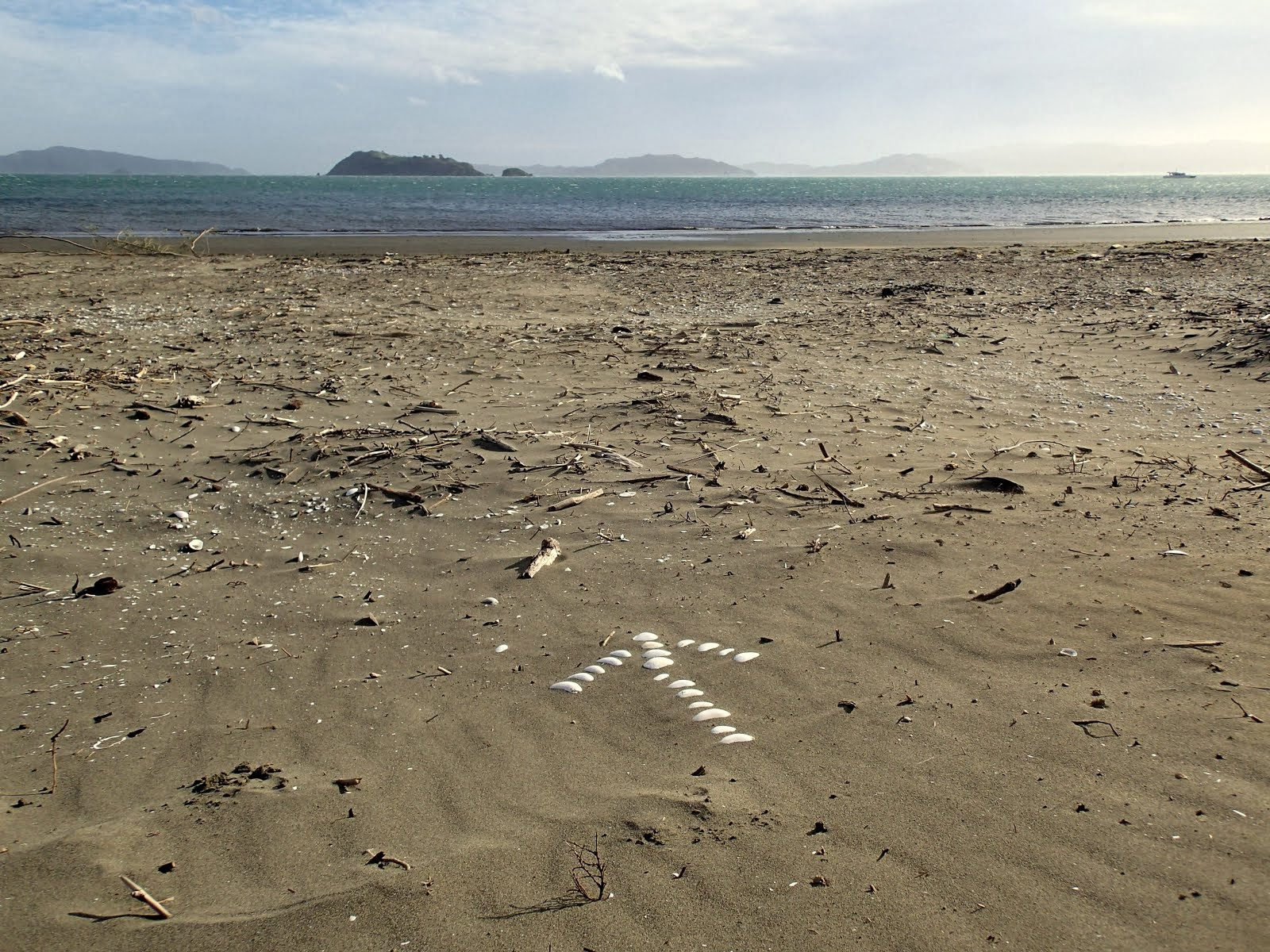 On Petone Beach, looking south to Matiu/Somes Island.