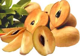Sapodilla nutrition facts and health benefits