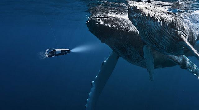 Drone bawah air ini dapat Menemukan Ikan dan Merekamnya