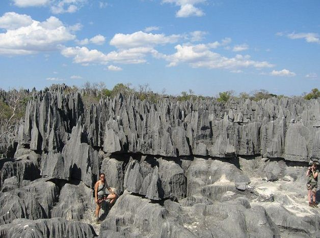 The stone forest (Madagascar)