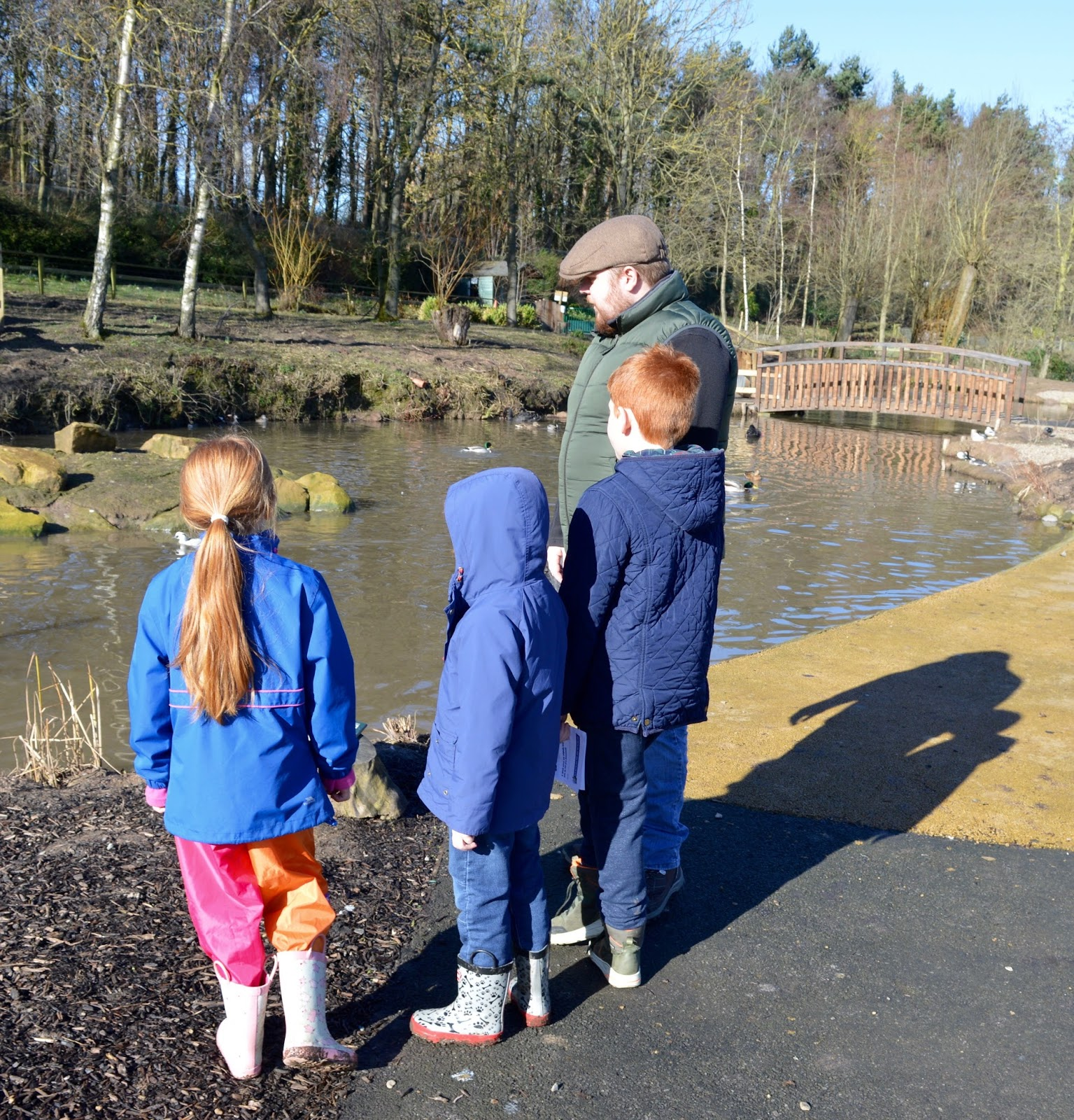 WWT Washington Wetland Centre | An Accessible North East Day Out for the Whole Family - duck pond