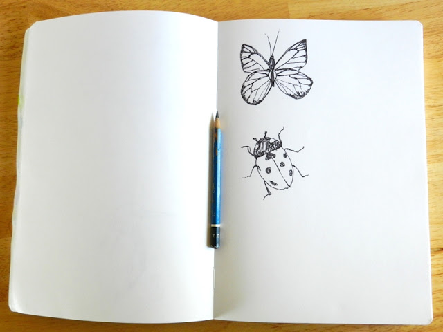 butterfly bug ink drawing