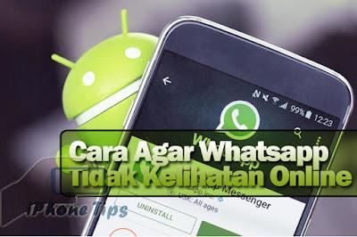 cara agar whatsapp tidak kelihatan online di hp android