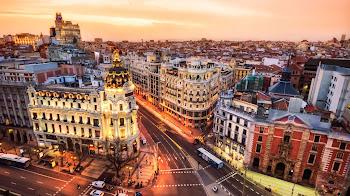 ¿Cómo eliminar palomas Madrid de los edificios?