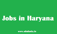 jobs in haryana