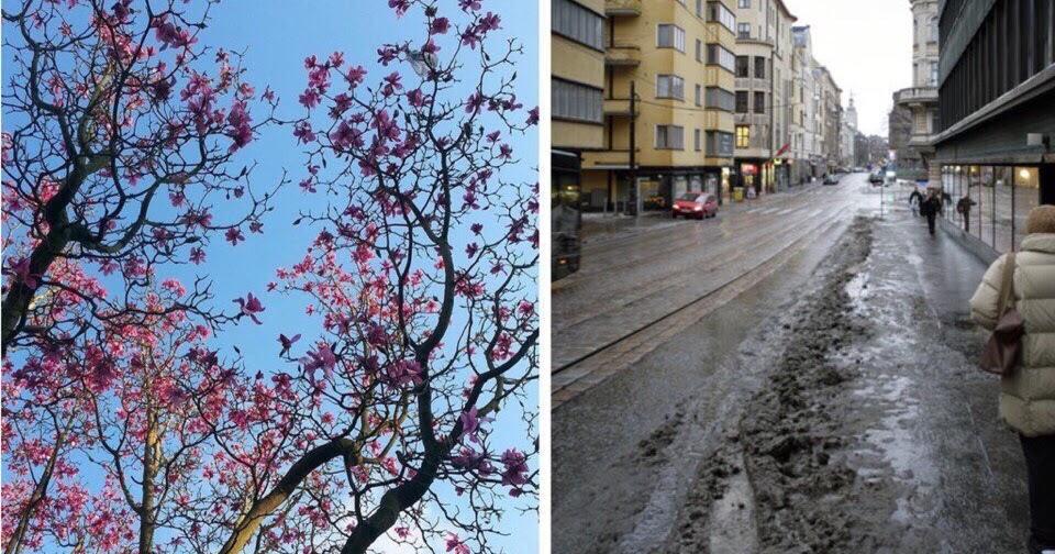 Весна смешные картинки с надписями