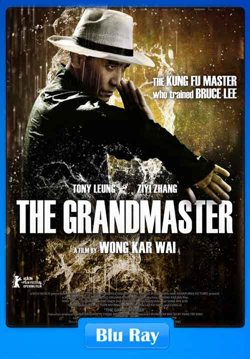 The Grandmaster 2013 BluRay 720p 500MB Poster