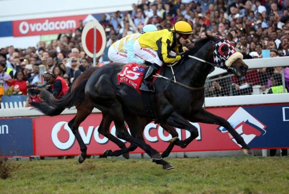 Power King winning the 2015 Vodacom Durban July