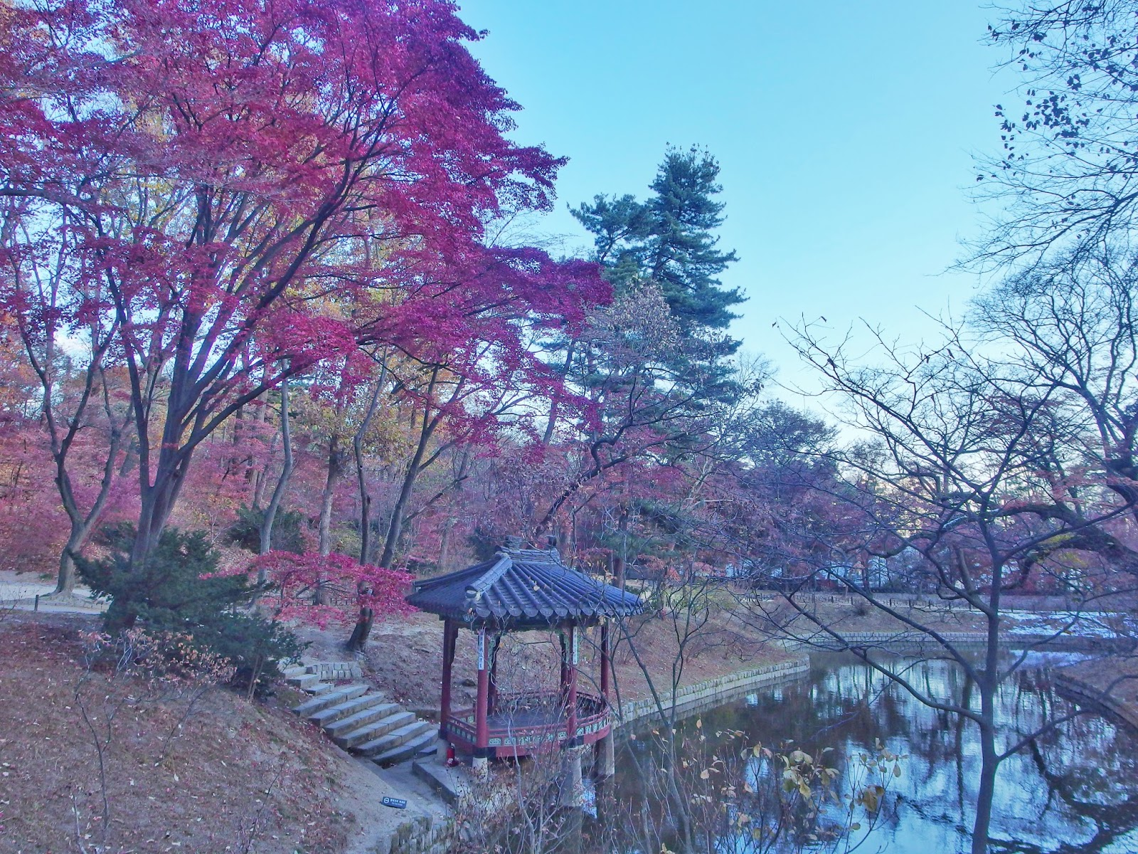 A 7-day South Korea Itinerary for City Dwellers and Nature