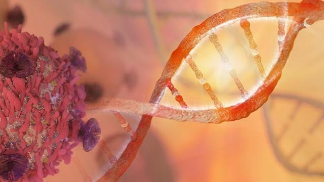 Un estudiante se inyecta una secuencia de ADN basada en versículos de la Biblia y el Corán
