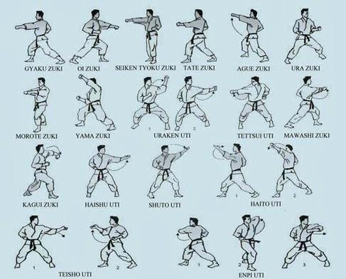 aprender ninjutsu