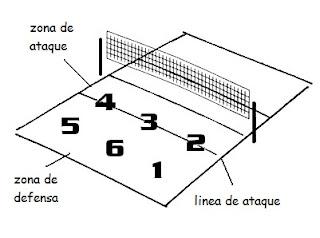 posiciones de embestida y parapeto linear unit voleibol