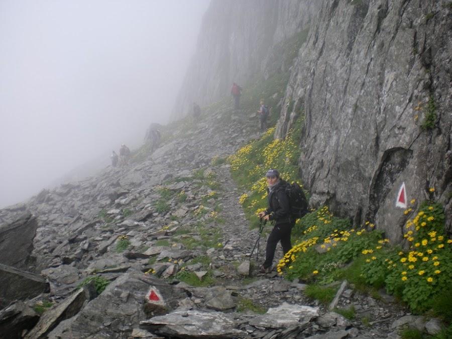 descenso-trekking-montes-carpatos-enlacima-rumania