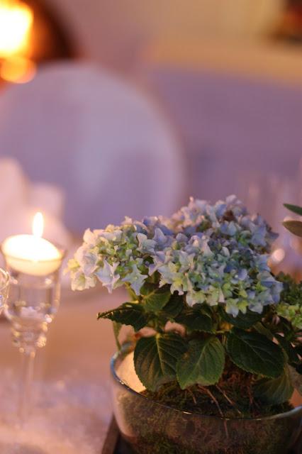 Hortensien, Eisblau und Leuchtrot, Winterhochzeit in den Bergen von Bayern, Riessersee Hochzeitshotel Garmisch-Partenkirchen, Winter wedding in Bavaria, Germany