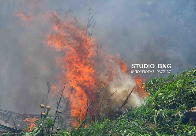Στο κόκκινο η Αργολίδα για κίνδυνο πυρκαγιάς και την Δευτέρα 20 Αυγούστου