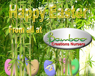 Bamboo creations victoria nursery would like to wish everyone a very happy 2016 easter.