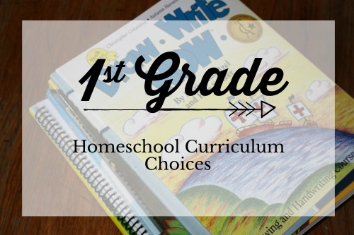 1st Grade Curriculum Choices for 2018-2019 #homeschool #curriculum