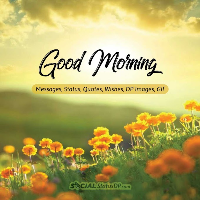 100+ Best 🌻🌞 GOOD MORNING 🌞🌻 Messages, Status, Quotes, Wishes, DP Images, Gif for WhatsApp