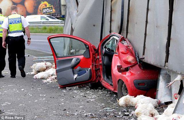 Waiting Bd The Most Incredible Escape Ever Car Crash